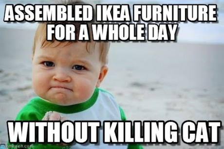 Achievement Unlocked: assembled IKEA furniture for a whole day... without killing cat!